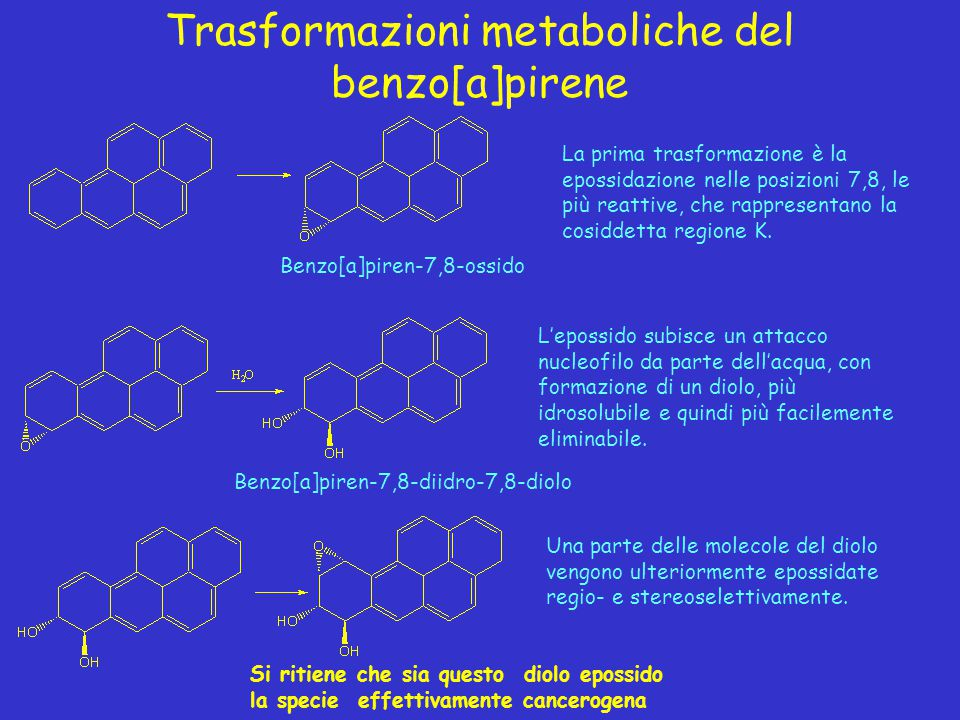 Trasformazioni metaboliche del benzo[a]pirene